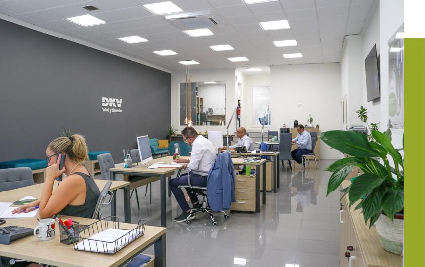 Equipo DKV de Elche y Orihuela